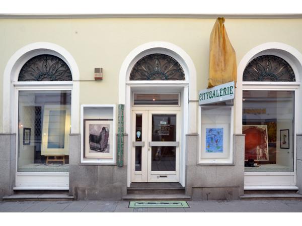Citygalerie in Linz